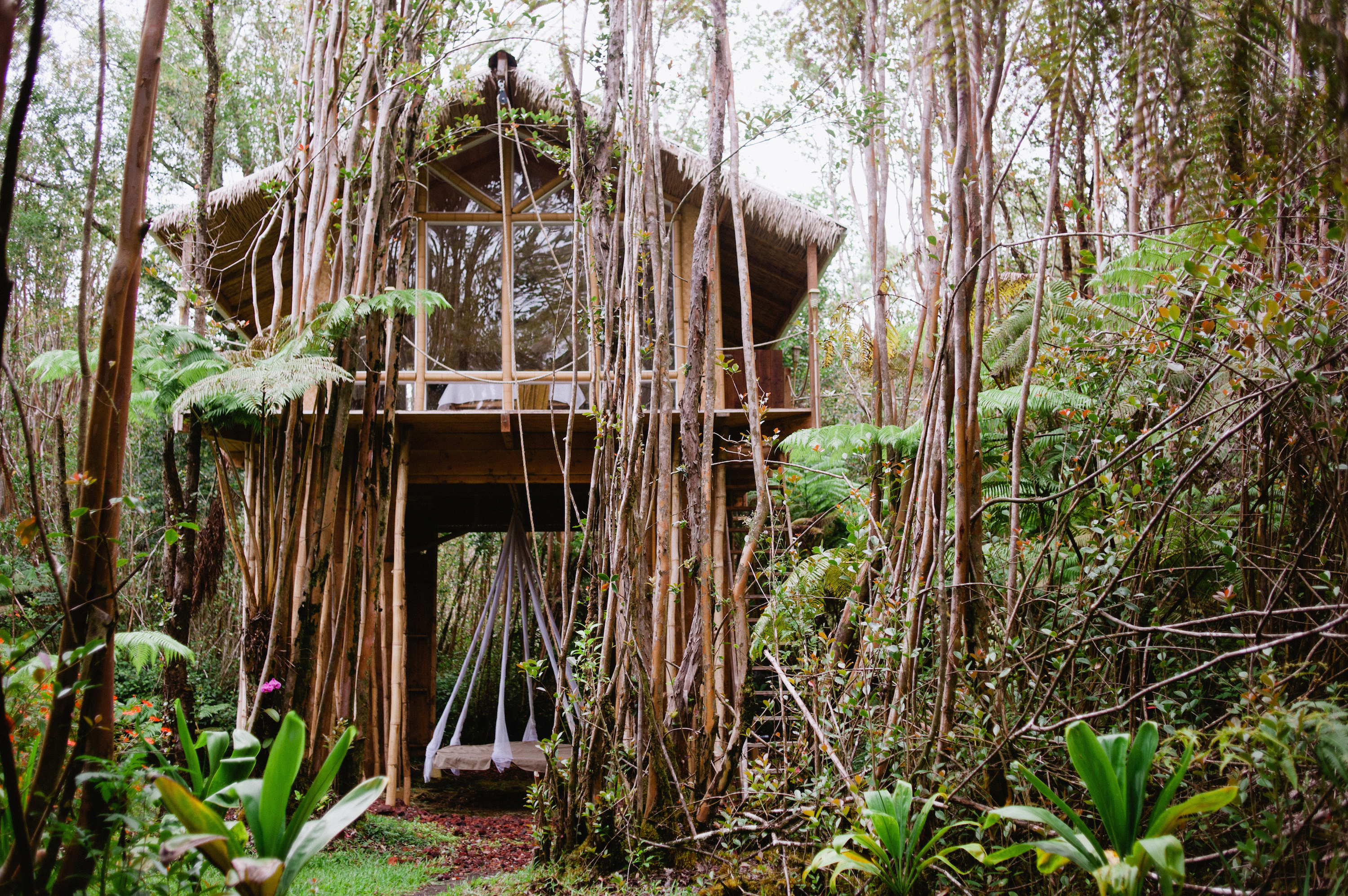 Inspired homes a tiny treehouse on the big island the for Small tree house