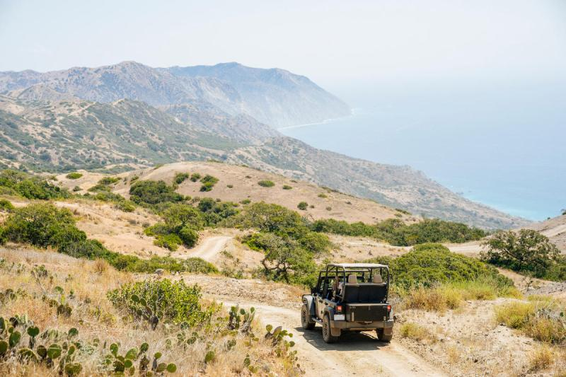 A jeep drives down a dirt road on a ridge on Catalina island in Ernie's Los Angeles Airbnb experience Explore Catalina Islands Wildlands