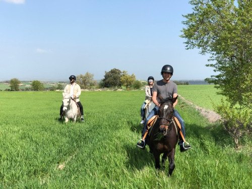 Ride Medieval Landscapes Experience
